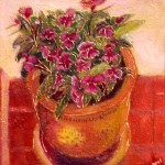 front_veranda_flowers